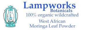 lampworks botanicals organic wildcrafted west african moringa leaf powder